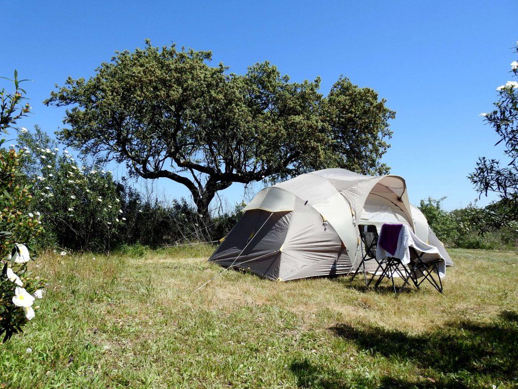 tent in bubulcus & bolotas